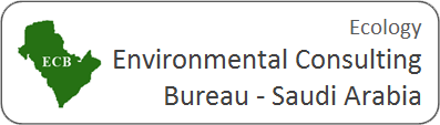 trail_camera_customer_logo_environmental_consulting_bureau_saudi_arabia.png